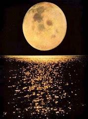 y  en la intensidad nocturna, observa en silencio, la luna de nácar...