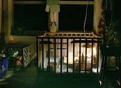 The Chick Crib/Playpen
