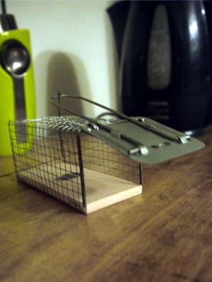 les ptilus une souris qui part. Black Bedroom Furniture Sets. Home Design Ideas