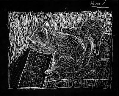 scratchboard_squirrel.jpg