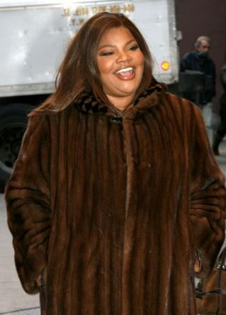 Plus Size Fur Coats Pictures to Pin on Pinterest - PinsDaddy