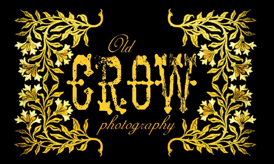 Old Crow Photography