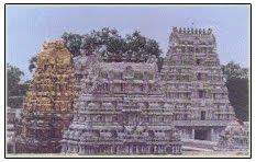 Kamatchi Aman Temple Towers