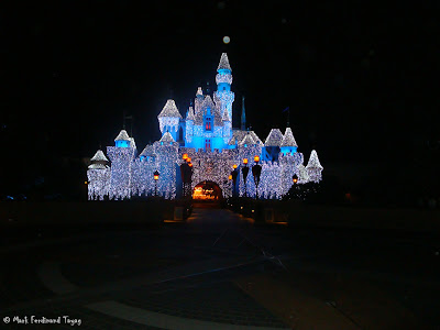 Disneyland Castle Photo 5