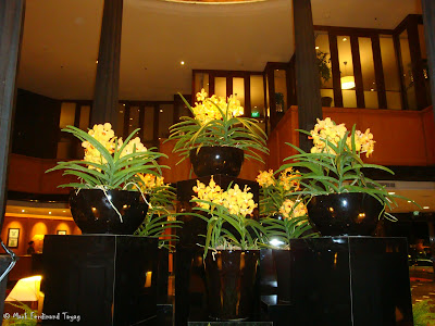 Orchard Hotel Batch 2 Photo 8