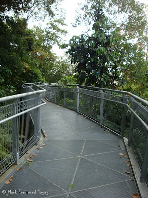 Mount Faber Singapore Hiking Batch 3 Photo 7