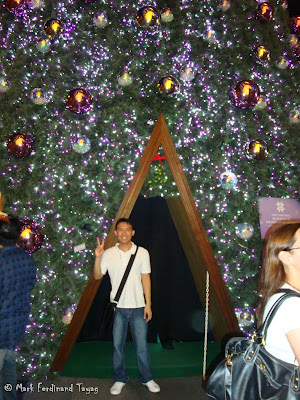 Ion Orchard Christmas Tree Photo 5