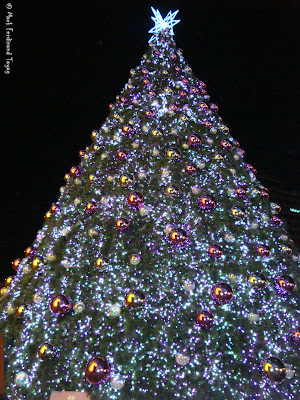 Ion Orchard Christmas Tree Photo 1