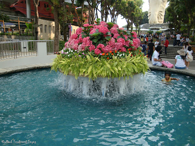 Sentosa Flowers 2