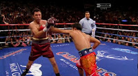 The Dream Match De La Hoya Vs Pacquiao Picture 8