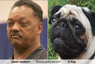 Celebrity Look-A-Like picture 1