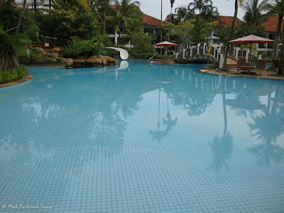 Bintan Lagoon Resort Swimming Pool Photo 9