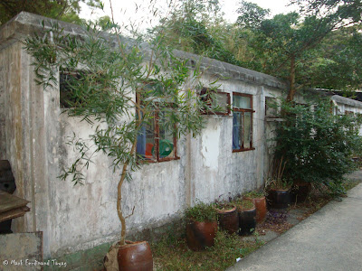 Scary House in Ngong Ping Hong Kong 3