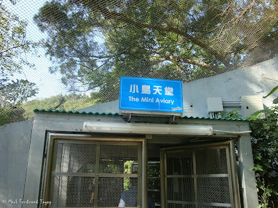 Ocean Park Hong Kong Aviary Batch 3 Photo 5