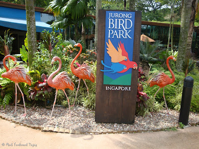 Singapore Jurong Bird Park Photo 8