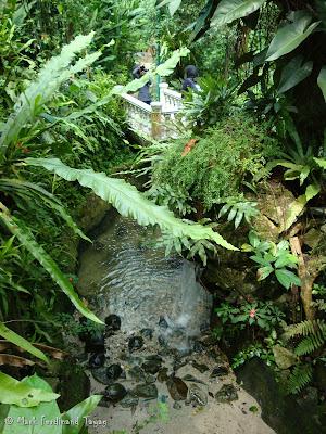 Butterfly Park, Kuala Lumpur Photo 11