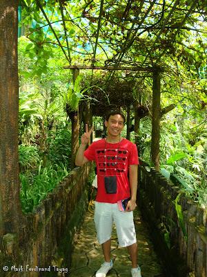 Butterfly Park, Kuala Lumpur Batch 2 Photo 4