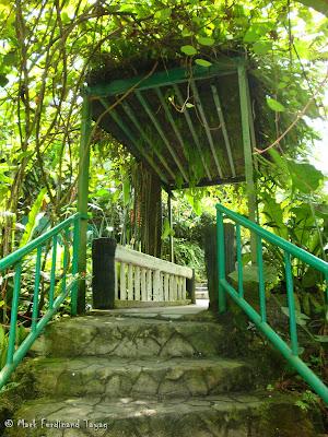 Butterfly Park, Kuala Lumpur Batch 3 Photo 9