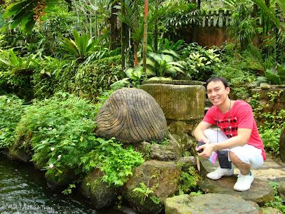 Butterfly Park, Kuala Lumpur Batch 3 Photo 4