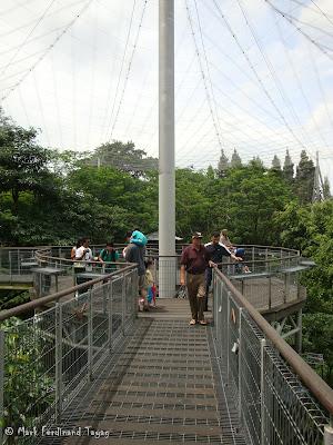 Jurong Bird Park - Lory Loft Photo 7