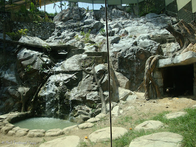 Sunway Lagoon - Wildlife Park Photo 5