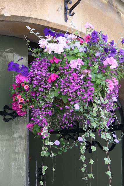 Pictures Of Large Hanging Flower Baskets : Madelief the art of hanging basket