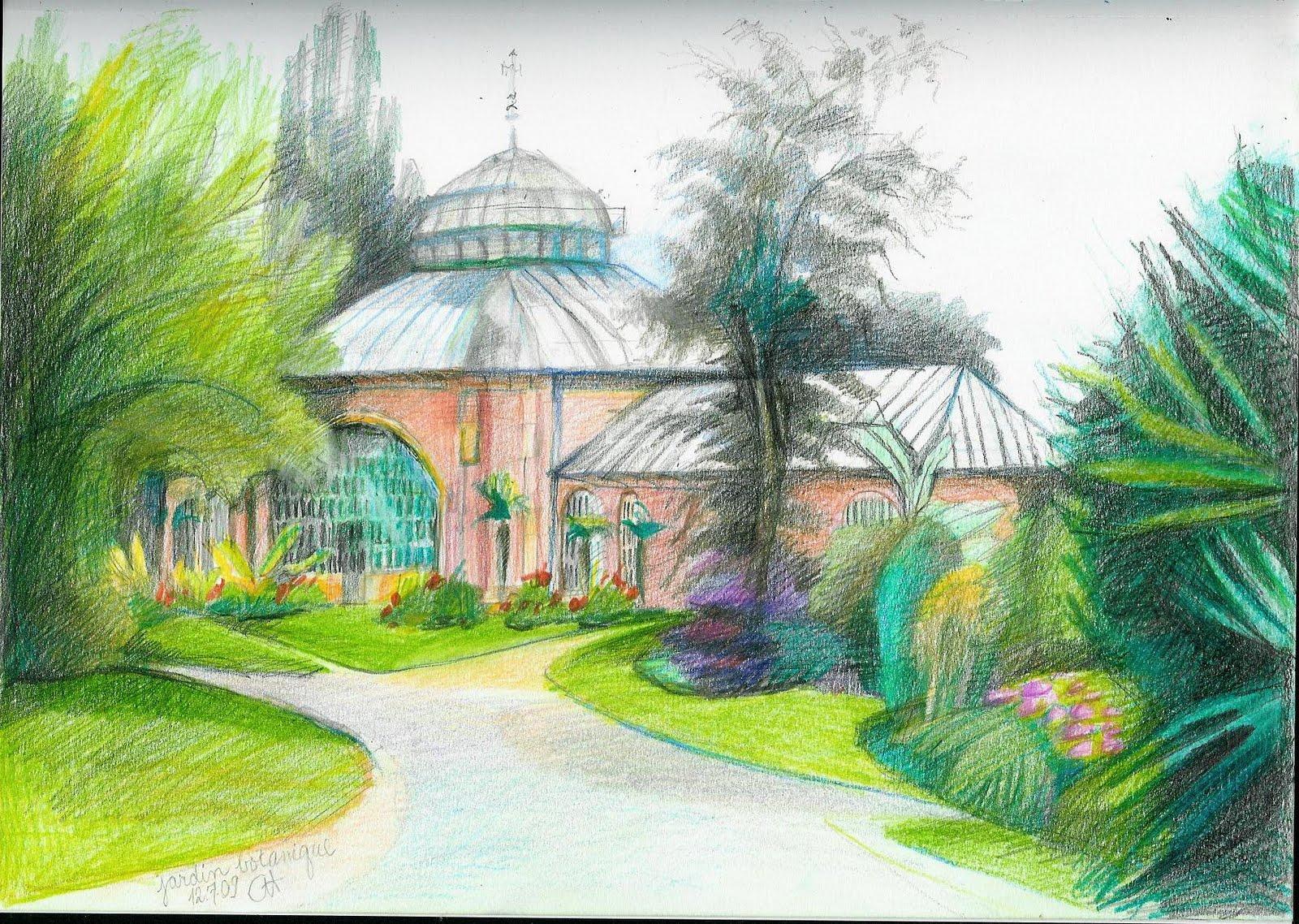 Catherine hale le jardin botanique metz france for Jardin botanique metz