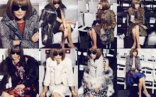 Por dentro do grande mundinho da moda!