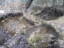 Landslides in NY