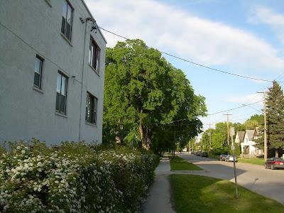Peut tre les lucioles rue deschambault for Auberge maison deschambault
