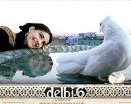 krishna shresthas blog download nepali songs
