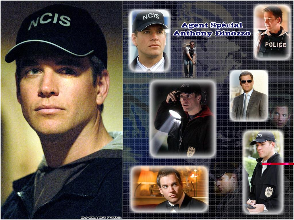 http://1.bp.blogspot.com/_ycm2WZLlyHc/TMFWBuhPNNI/AAAAAAAAABY/DG8Gelgd6UI/s1600/NCIS-Tony-DiNozzo-ncis-669646_1024_768.jpg