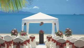 Getting married is such an of import number that yous desire everything to last only correct together with t <a href=