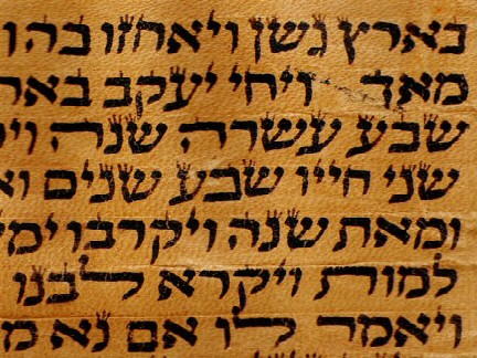 blank scroll template. Torah+scroll+template