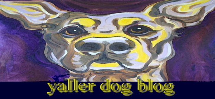 the yaller dog blog