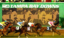 Tampa Bay Derby (GIII) $300,000