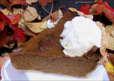 Pumpkin pie side view