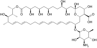 Chemical structure of Nystatin A1