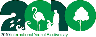 International Year of Biodiversity Logo