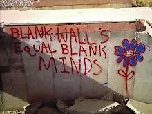 inmaculadas paredes