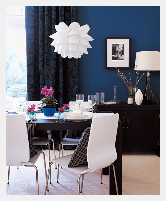 Blue Accent Wall Beauteous Of Blue Dining Room Accent Wall Pictures