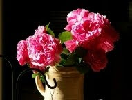 Roses cristallisées...