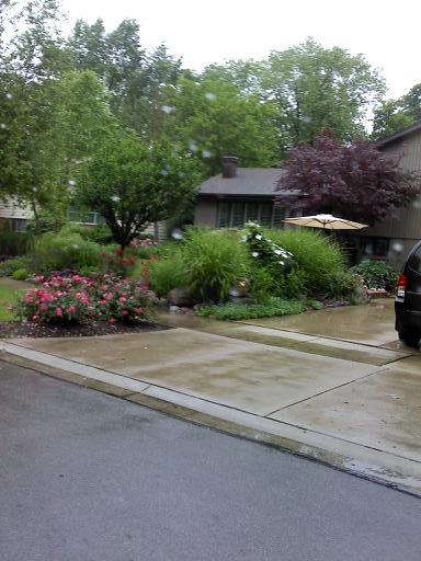 lady gaga front yard landscaping