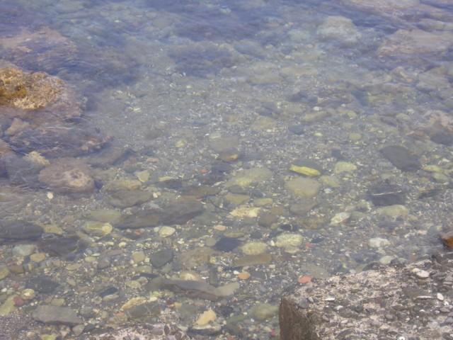 Memento solonico intermezzo domenicale scario salerno for Piccoli piani di casa sulla spiaggia su palafitte