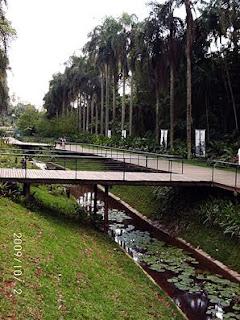 Sampa - Jardim Botânico