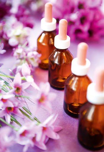 Las terapias florales son muy buenas también para niños, animales y cultivos!!!