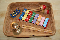 Instrument Basket