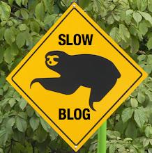 Bloggare con lentezza