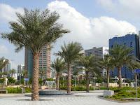 A lush park in Abu Dhabi, UAE
