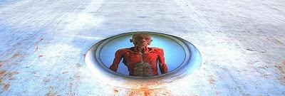 redução vertical a partir de imagem de Antonio Carlos Cartejón / Flickr.com